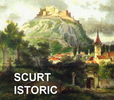 scurtistoric