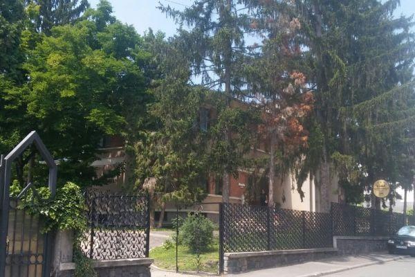 vila-lui-ceausescu-22EDF3C2D-C881-E9D2-04DA-833EFA40C808.jpg